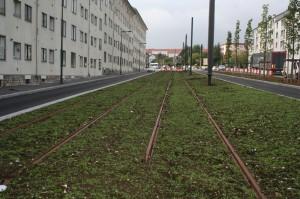 Travaux du tram - Vers l'entrée Est
