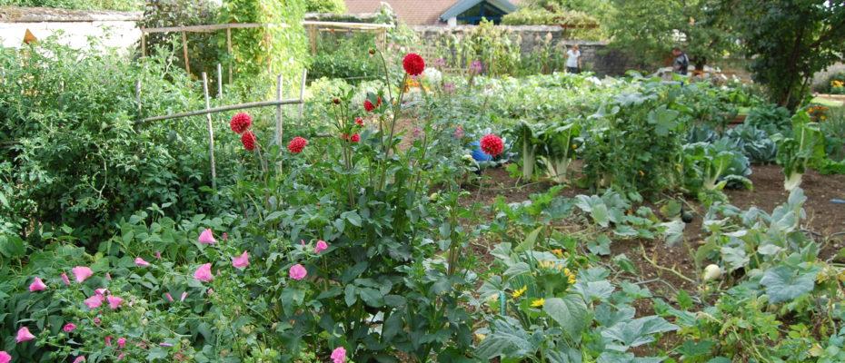 Jardin P Palente_2017_08_21_0476